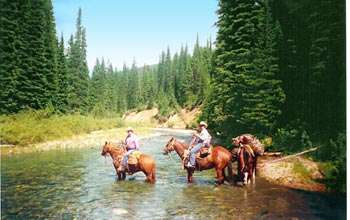 Horseback Riding in Northwest Montana