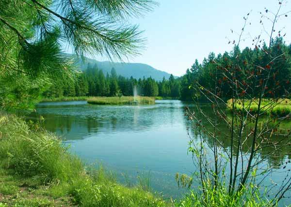Heron Montana Area Information and Northwest Montana Real Estate